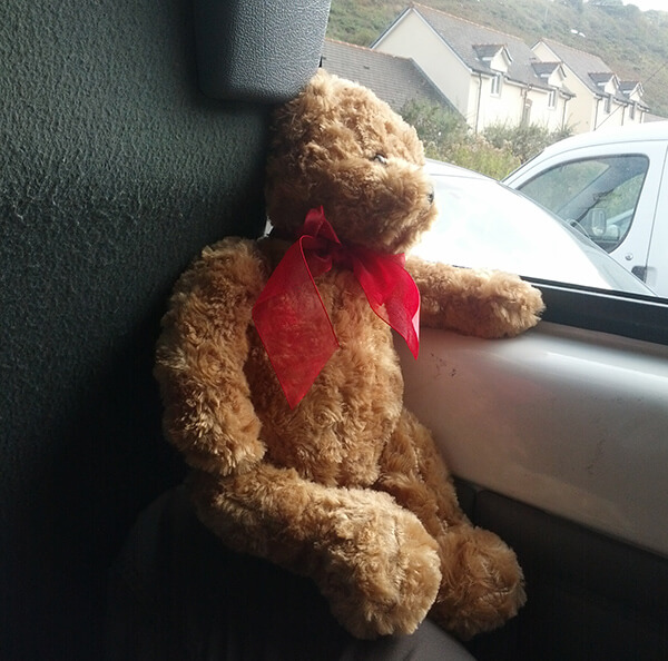 Ted wishing he could join in