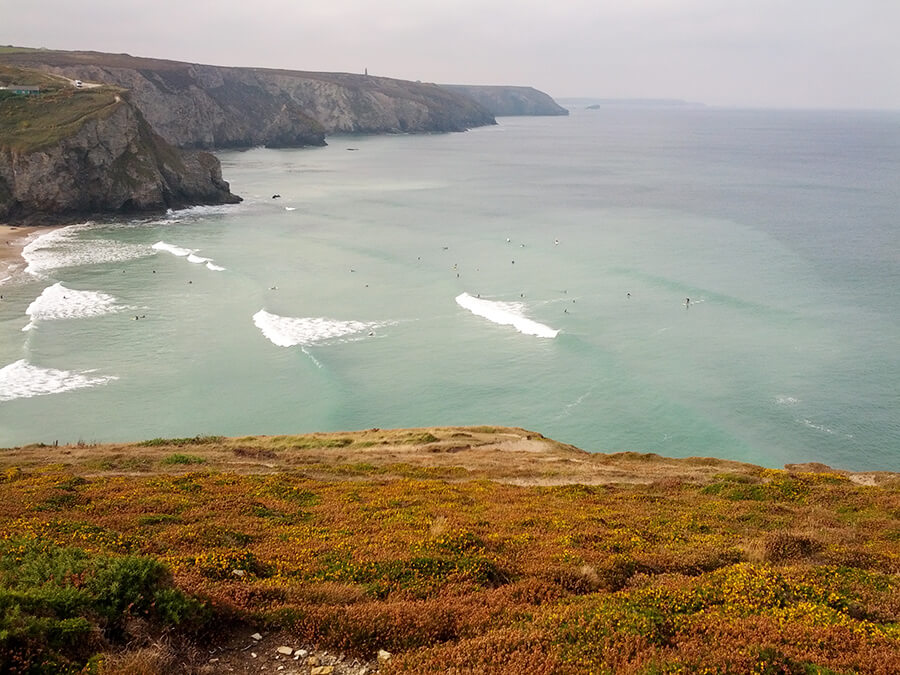 View from the cliff. Seals?